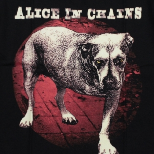 Alice In Chains - Dog